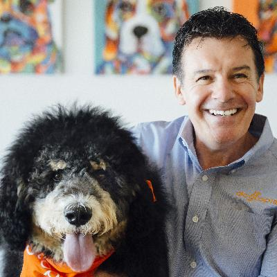 Picture of Neil Gill, CEO of Dogtopia
