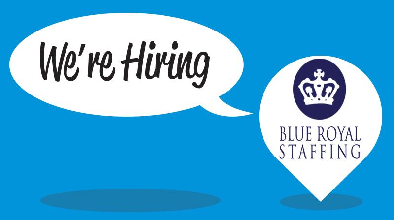 blue royal staffing careers and employment