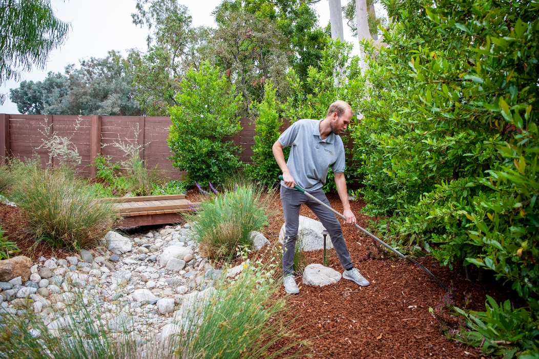 Surrounded by greenery, a FormLA Landscaping team member rakes mulch into place.