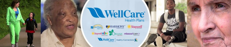 working at wellcare  675 reviews