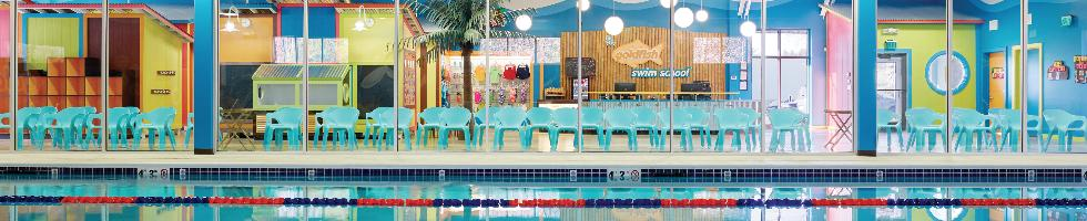 Questions And Answers About Goldfish Swim School Indeedcom