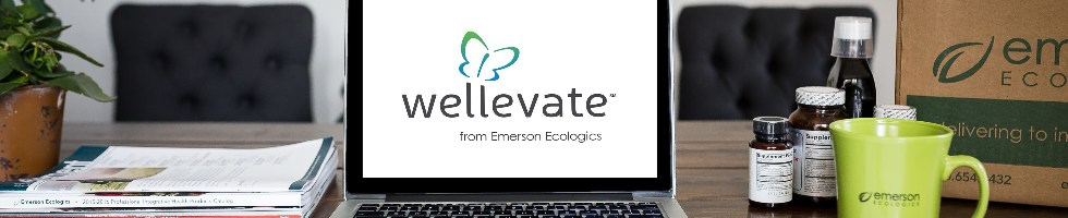 Working at Emerson Ecologics: 65 Reviews | Indeed com
