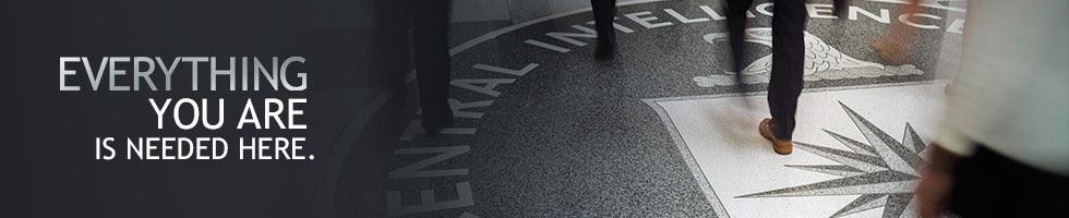 Central Intelligence Agency IT Security Specialist Salaries