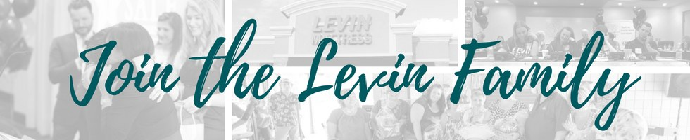 Levin Furniture