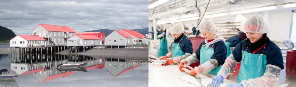 working at icicle seafoods  inc   117 reviews