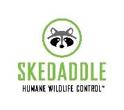 Skedaddle Humane Wildlife Control