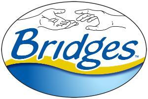 BRIDGES OF INDIANA