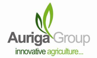 Auriga Group