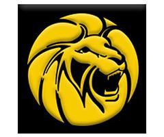 logotipo de la empresa Zapatearías León