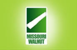 Missouri Walnut