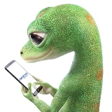 GEICO - go to company page