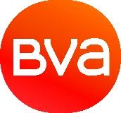 Logo BVA Group