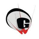 G D Goenka Public School logo