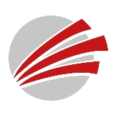 PS Team GmbH-Logo