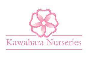 Kawahara Nurseries