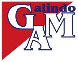 logotipo de la empresa GALINDO ALQUILER DE MAQUINARIA S.L