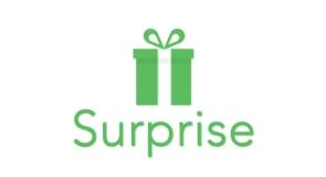 Surprise Inc.