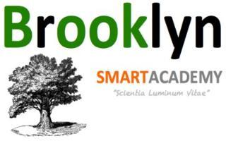 Brooklyn Smart Academy logo