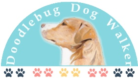 Doodlebug Dog Walker LLC logo