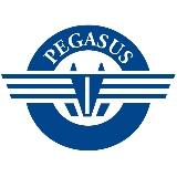 Pegasus Maritime Inc