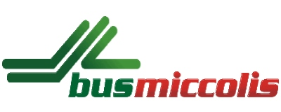 Logo Gruppo Miccolis