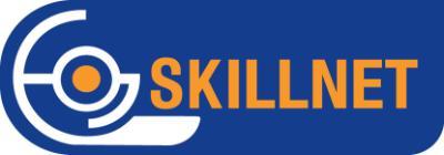Skillnet Ltd logo