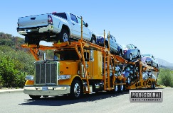Professional Auto Transport