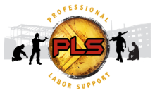 Professional Labor Support