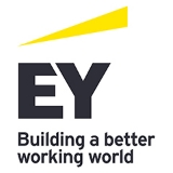 Internal Audit Assistant Manager - EY - -
