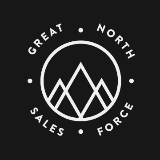 Great North SalesForce logo