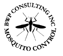 BWP Consulting Inc