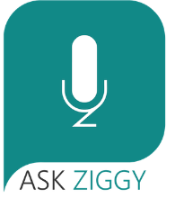 Ask Ziggy, Inc