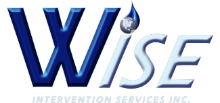WISE Intervention Services