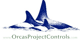 Orcas Project Controls