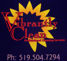 Vibrantly Clean logo