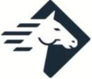 Logo Paladin Technologies