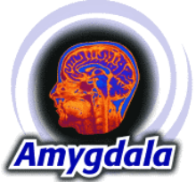 Amygdala Recruitment Solutions logo