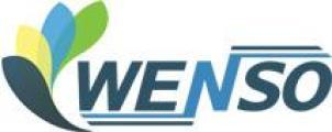 Wenso logo