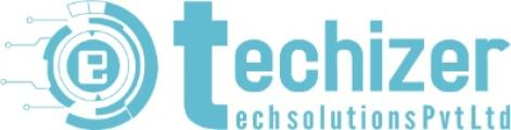 Techizer Tech Solutions Pvt Ltd logo