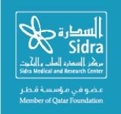 Sidra logo