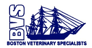 Boston Veterinary Specialists