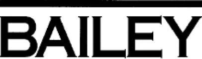 The Bailey Group of Companies logo