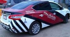 Palisade Security Group