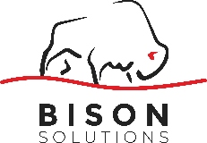 BISON SOLUTIONS LTD.