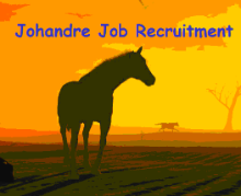 Johandre Job Recruitment logo