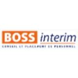 Logo Bossinterim