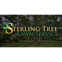 Sterling Tree and Lawn