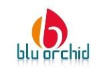 BluOrchid International Services Pvt Ltd. logo