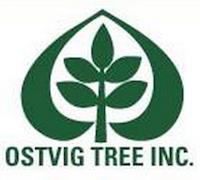 Field Arborist - Ostvig Tree - Maple Plain, MN thumbnail
