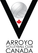ARROYO Volleyball International